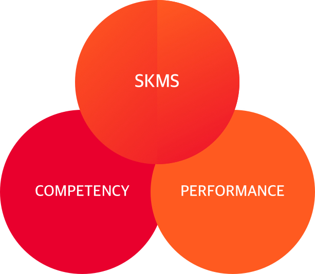 SKMS, COMPETENCY, PERFORMANCE